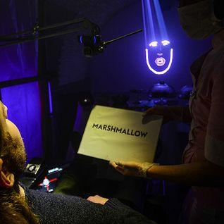 Marshmallow Laser Feast: Laser Face (full mix)