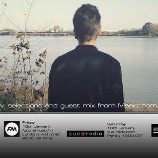 Bass Agenda 120: MAELSTROM interview & guest mix