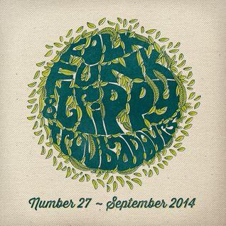 Folk Funk and Trippy Troubadours 27