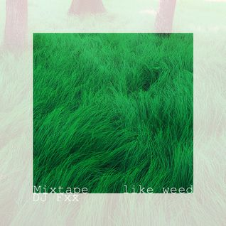 "DJ Fxx Mixtape ""Like Weed"""