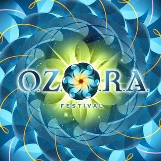 Psyli - O.Z.O.R.A. Tour & Party 12.10.2013