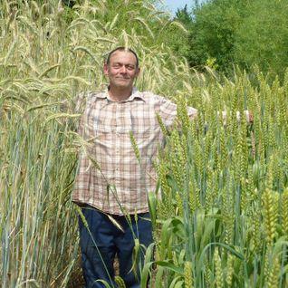Deano Martin on Growing Annual Grains