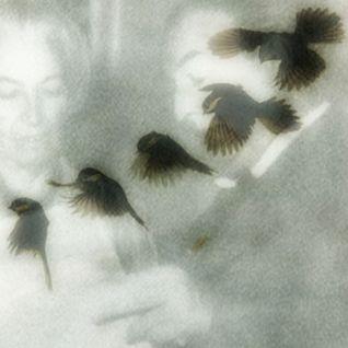 Las aves canoras - Pablo Neruda Y Gabriela Mistral