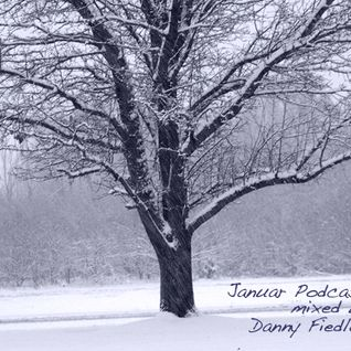Januar Podcast mixed by Danny Fiedler ( Fresh Music Records ) Leipzig