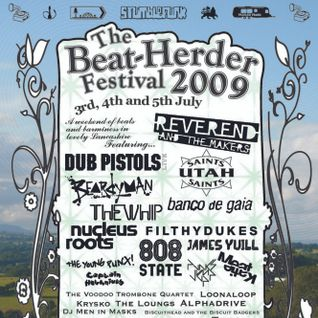 Live at Beat-Herder Festival 2009 - Saturday evening