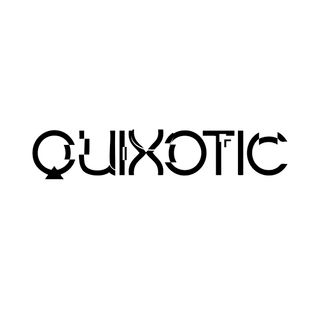 Quixotic - Minimal movies edition 2013