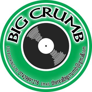 BiG CrUmB foundation reggae dancehall mix 100% vinyl live recording
