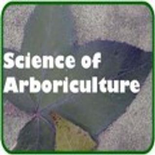 Urban Forestry in the City of Melbourne— by Ian Shears, Manager of Urban Landscapes in the City of M