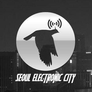 Seoul Electronic City #18