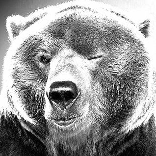 BearSelector Birthday Bash! Hulme Exclusive - 7th April 2012!