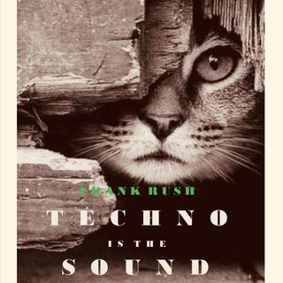Frank Rush Techno Is The Sound #12