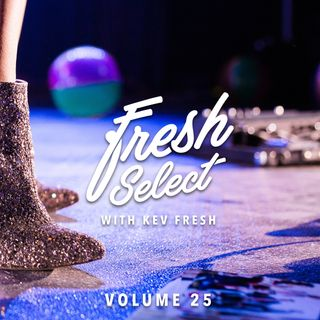 Fresh Select Vol 25 (Disco House Edition) 9_11_16