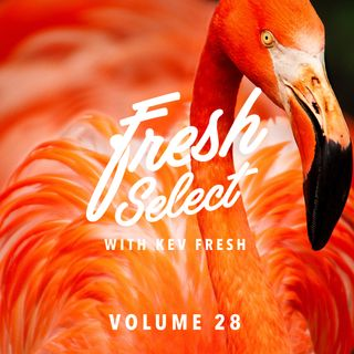 Fresh Select Vol 28 - 28_11_16