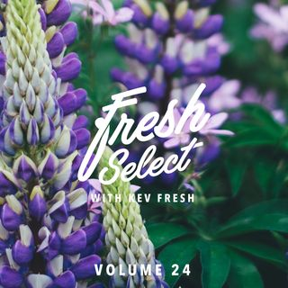 Fresh Select Vol 24 Nov 1st 2016