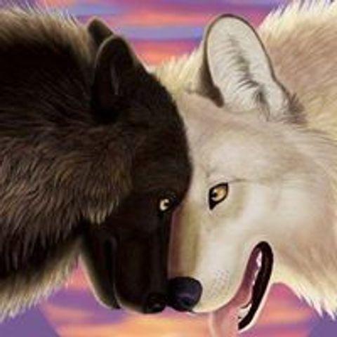 предыдущие они притча о волках в картинках индеец супруга, свою