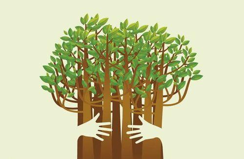 Svet će biti bogatiji za pet stabala koja će izrasti - od muzike i vaše podrške!