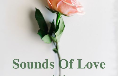Sounds Of Love Vol.6