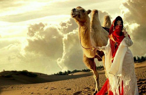Sahara Series