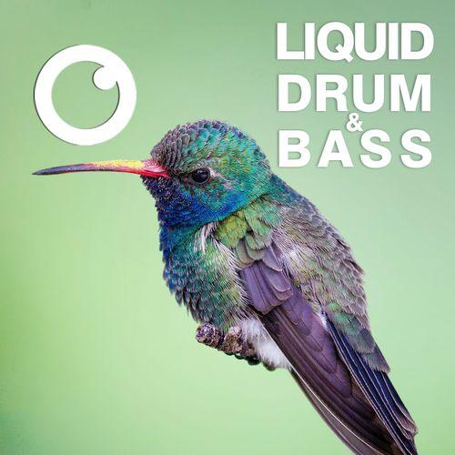 Download Dreazz: Liquid Drum & Bass Sessions 45 (June 2021) mp3