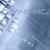 D-Vine Inc.