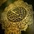 Syed Nadir Iqbal Alvi