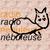 Nébuleuse (radio)