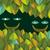 La Cofradía de la Selva