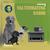 Valternativa Radio