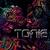 DJ_Team_ToNic