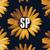 Soptimus Prime
