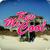 Kev Mc Cool