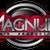 The_DJ_magnum