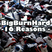 BigBurnHard - 16 Reasons -