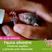 Fauna silvestre; primeros auxilios y liberación