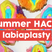 Summer Hack: Designer vaginas in demand