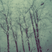 Dustin Morris - Rain
