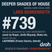 Deeper Shades Of House #739 w/ exclusive guest mix by LADYMONIX