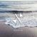 Rodrigo's Seashoresounds