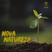 Nova Natureza Pt.02 - O templo tomado de Glória
