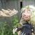Marionnettes en bois & humour à étages cet été à Mulhouse