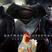 32 - Cine-maso: Batman Vs Superman