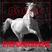 Pferdestärken Nr. 01