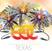 EDC 2015 Houston To Vegas