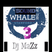 Dj Mazz SoUnD oF ThE wHaLe - Vol 3-  fRoM tHe RoOfToP 2 thE cLuB