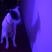 Night Gallery A-Z 2020