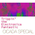 Trippin' the Electronica Fantastic (Cicada Special)