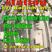 La Matinale du 24 Septembre : Reggae Station