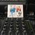 Franck Descollonges - Heavenly Sweetness Radio Show #36 - Freedom Jazz France Special