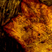 Traces014 (151109)