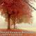 Vocal Trance Melodies Autumn 2012